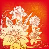 Blume auf Rot Stockbild