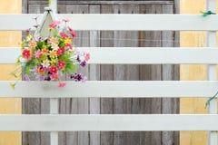 Blume auf Wand Stockbild