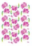 Blume backgraund Stockbilder