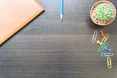 Blume, Buch und bunte Bleistifte Ansicht von oben genanntem mit Kopienraum Lizenzfreie Stockfotos