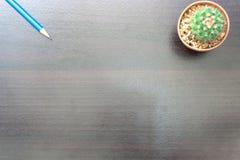 Blume, Buch und bunte Bleistifte Ansicht von oben genanntem mit Kopienraum Stockbilder