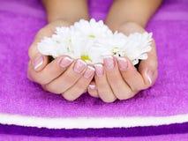 Blume in der Hand der Frauen Lizenzfreie Stockfotografie