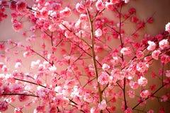 Blume des Abschminktuchs Stockbild