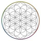 Blume des Lebens, Buddhismus chakra Illustration vektor abbildung