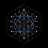 Blume des Lebens mit David-Stern vektor abbildung