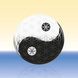 Blume des Lebens Yin Yang Spheres Stockfotos