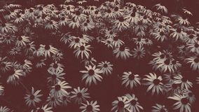 Blume desaturated lizenzfreies stockbild