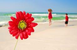 Blume durch spielerische Kinder am Strand Lizenzfreies Stockbild