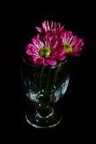 Blume in einem Glas lizenzfreie stockbilder
