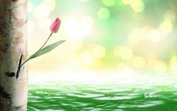 Blume eingestellt auf Baumstamm Stockbild