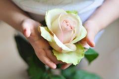 Blume für die Mama Stockbild