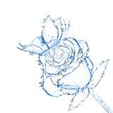 Blume gebildet vom Wasser. Stockbild
