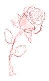 Blume gebildet vom Wasser. stieg. Stockfotos