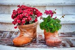 Blume-geformte Schuhe und Blumen Lizenzfreie Stockfotos