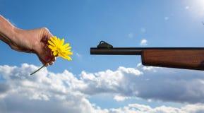 Blume GEGEN Gewehr Stockbild