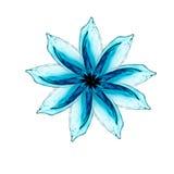 Blume gemacht vom Wasserspritzen Stockbild