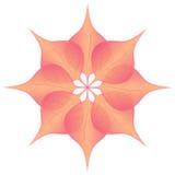 Blume gemacht von acht Blättern im Rosa und in der Orange Lizenzfreies Stockbild