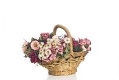 Blume getrennt Lizenzfreies Stockfoto