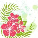 Blume grunge Hintergrund Stockfoto