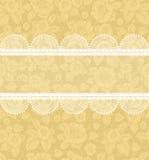 Blume-Hintergrund mit Spitze Lizenzfreies Stockbild