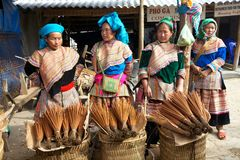 Blume Hmong Minorität-Leute Vietnam Stockbilder