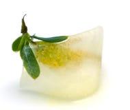 Blume im Eiswürfel Stockfotos