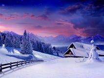 Blume im Schnee stockfotos