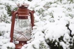 Blume im Schnee Lizenzfreies Stockfoto