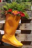 Blume im Stiefel Stockfotos