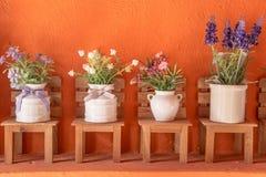 Blume im Topf lizenzfreies stockfoto