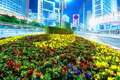 Blume Kindertagesstätteecke der modernen Stadtstraße Lizenzfreie Stockbilder