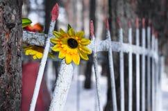 Blume am Kirchhof Stockfotografie