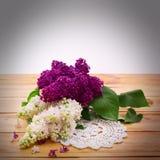 Blume lokalisierte lila Niederlassung Stockfotos