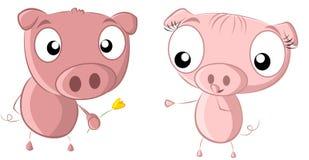 Blume mit 2 Schweinen Lizenzfreie Stockfotos