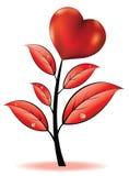Blume mit Innerem Stockbilder