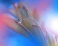 Blume mit Waterdrop Lizenzfreies Stockfoto