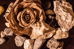 Blume, Oberteil und Steine Lizenzfreie Stockfotos