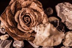 Blume, Oberteil und Steine Lizenzfreie Stockbilder