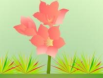 Blume Rosa und yeloow Stockfotos