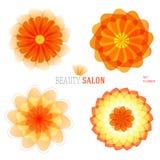 Blume-Satz-Logo-Ikone-Blumen--Schönheit-Salon Lizenzfreie Stockbilder