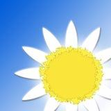 Blume-Sonne auf einem blauen Hintergrund Lizenzfreie Abbildung