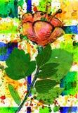 Blume und Auszug und Sommer und Quadrat Stockfotos