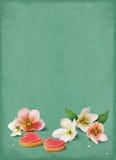 Blume und Biskuit stock abbildung