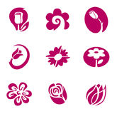 Blume und Blumenelemente Lizenzfreie Stockbilder