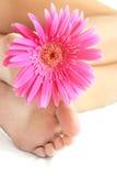 Blume und Füße Stockbilder