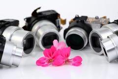 Blume und Lernziele der kompakten Kameras stockfotos
