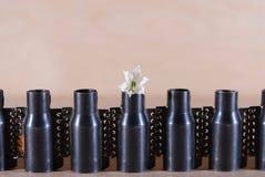 Blume und Metall, Stahl und Anlage Stockfotos