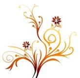 Blume und Rebe Lizenzfreies Stockfoto