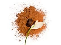 Blume und Süßigkeit auf einem Kakaopulver Lizenzfreies Stockfoto