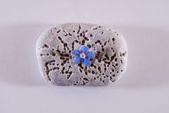 Blume und Stein, fünf Blumenblätter Lizenzfreies Stockbild